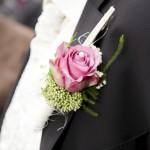Rosa Rose: Ansteckblume Bräutigam
