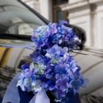 Royal in Blau