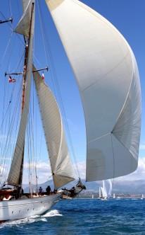 Heiratsantrag luxuriös auf dem Segelboot