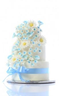 Dekoration mit Gänseblümchen und blauem Band