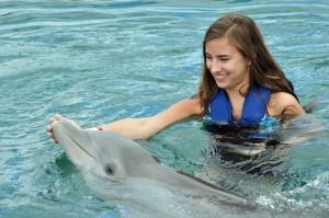Delphin zum Anfassen in Mexiko