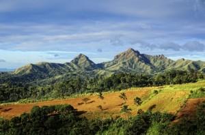 Hochwald mit Primärvegetation auf Bali