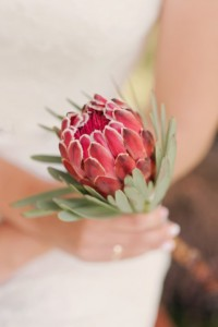 Brautstrauss Artischocke Rot
