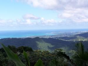Bewaldete Hügel in der Karibik