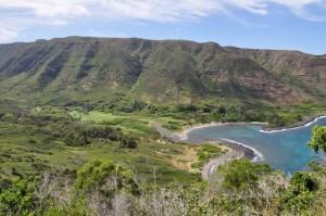Paradiesisches Flußtal auf Hawaii