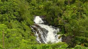 Ein Wasserfall auf den Seychellen