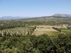 Natürliche Vegetation auf Sardinien