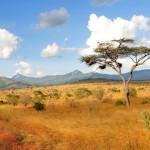 Flitterwochen in Südafrika: Ideen für Ausflüge