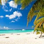 Flitterwochen auf Hawaii: Ideen für Ausflüge