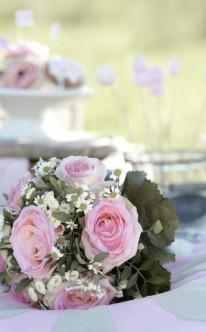 Rosa Rosen und Strauchmargeriten
