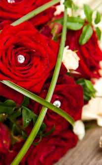 Rote Rosen mit Strasssteinen