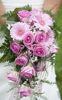 Wasserfall aus rosa Margeriten und Rosen