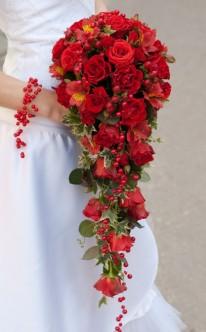 Wasserfall aus roten Rosen