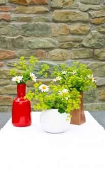Verschiedene Vasen mit Blumensträußen