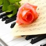 Lieder für einen Heiratsantrag
