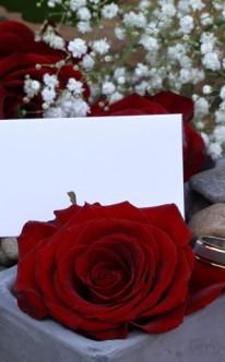 Rosen und Schleierkraut als Tischschmuck