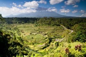 Vulkan auf Bali