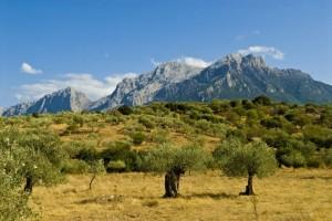 Gebirgszug auf Sardinien