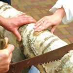 Traditionell und witzig: Hochzeitsspiele, die im Trend liegen