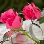 Sommerliche Tischdeko: Ideen für eine Hochzeit im Freien