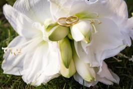 Fotos eurer Hochzeit